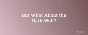 But What About the Dark Web